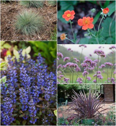 contemporary style readymade border garden