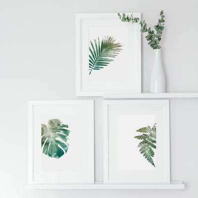 botanical prints by Georgie St Clair