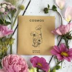 cosmos seed pink flowers Border in a Box