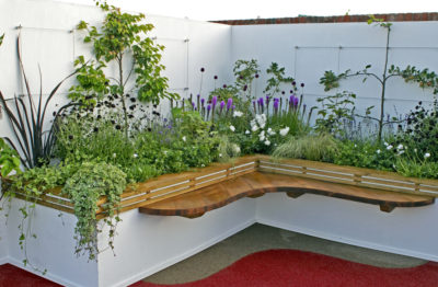 flowers in a raised bed