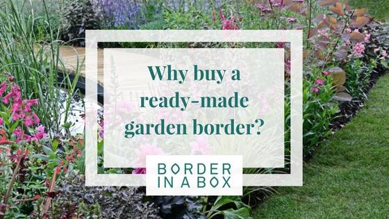 why buy a readymade garden border