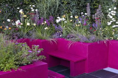 flowers in purple raised bed