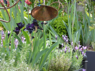 The Perfumers Garden