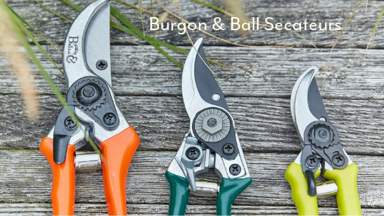 Burgon & Ball secateurs gardening tools