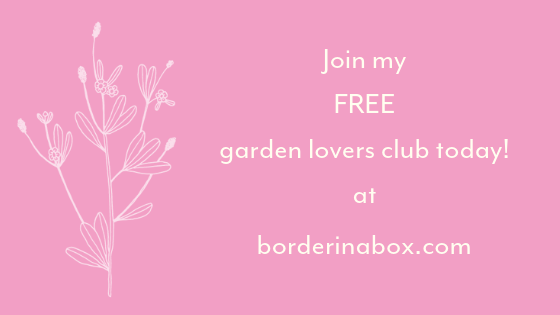 Border in a Box garden lovers club