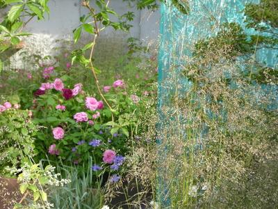 RHS Chelsea Silent Pool gin garden