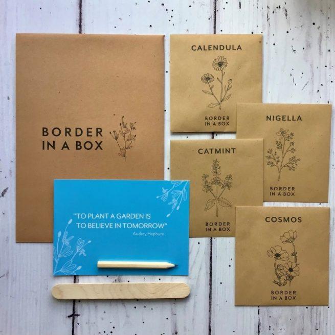 kraft seed envelopes