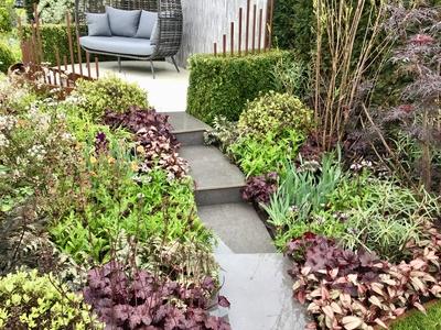 RHS Malvern show garden Diabetes