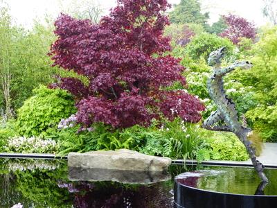 RHS Malvern Leaf Creative show garden