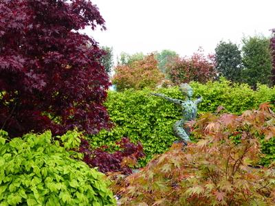 RHS Malvern Leaf Creative show garden Peter Dowle