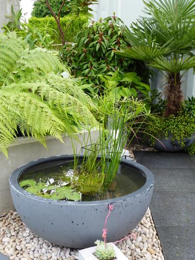 Defiance show garden RHS Malvern pond