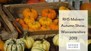 RHS Malvern Autumn Show, Worcestershire 2019