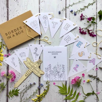 childrens nature colouring in gift wildflower seeds
