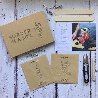 thyme basil border in a box herb kit