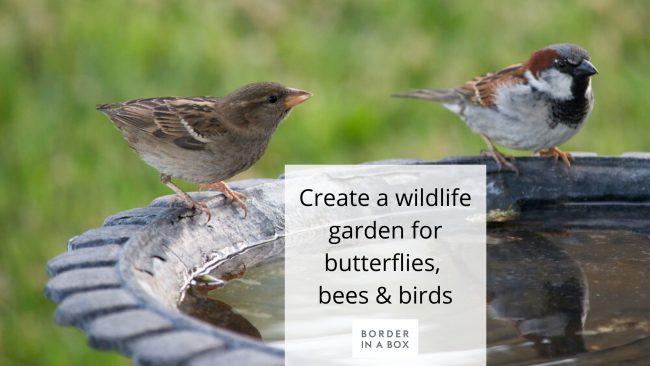 blog header create a wildlife garden