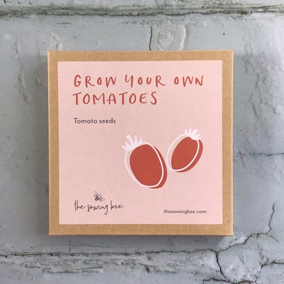 grow your own tomatoes seed box
