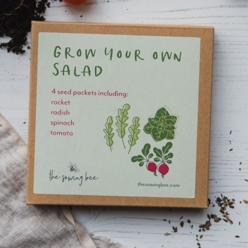 The Sowing Bee grow your own salad box
