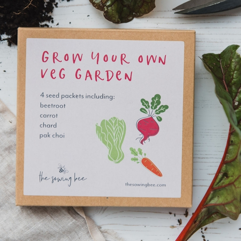 The Sowing Bee grow your own veg seed box