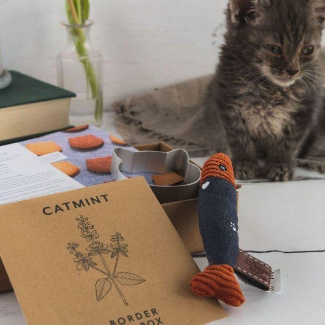 cat mint seeds cat toy