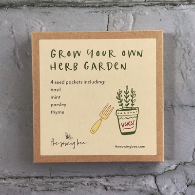 grow your own herb garden seed box