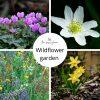 wildflower garden spring bulbs cyclamen anemone daffodil narcissi