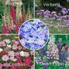 grow your own flower garden