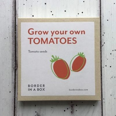 grow your own tomatoes seed