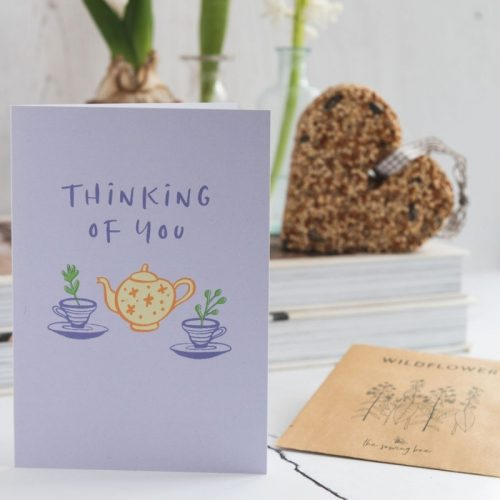 thinking of you card seeds and heart shaped bird feeder