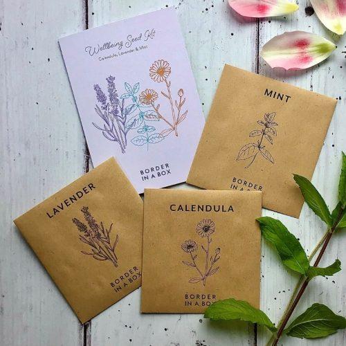 wellbeing seed kit