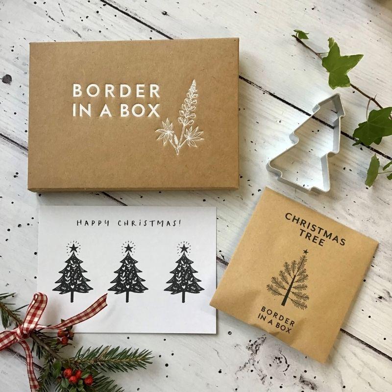 Christmas shortbread box box