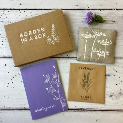 Border in a Box lavender gift box thinking of you